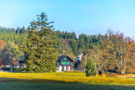 Mountain village Kladska with typical wooden houses. Kladska, Czech Republic.