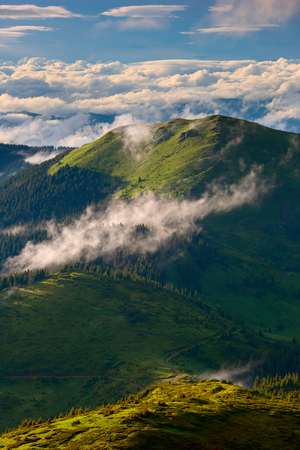 contrast and dramatic fog after rain in mountains Carpathians