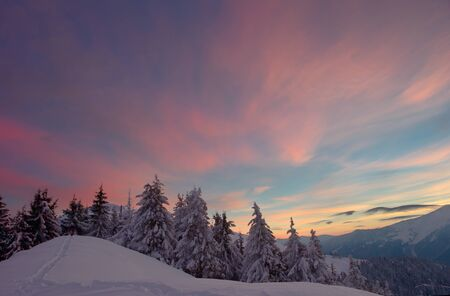 Winter in the mountains, the trees are covered with snow. good sunlight. Sunrise Sunset Stock Photo