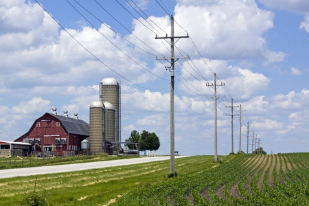 lines: Red Barn and Crops by Road with Power Line