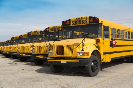 school buses in parking lot