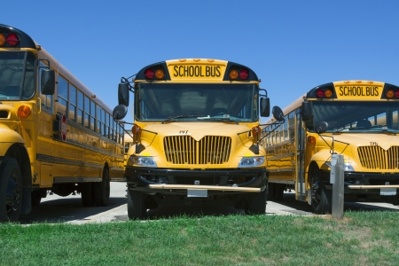 lineup: yellow american school buses lineup