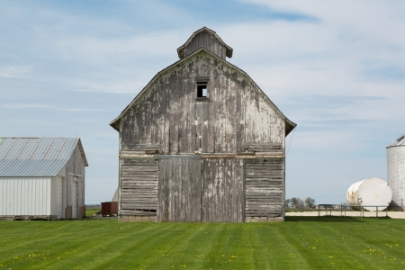 old gray barn and mowed lawn with dandelions  photo