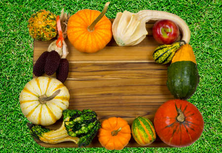 fall composition of pumpkins and gourds on a wooden board on grass photo