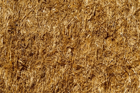 background of close up golden square haystack bale photo