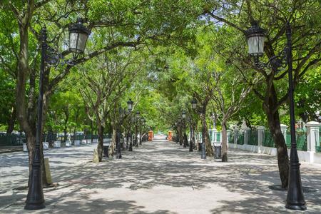 Tree lined avenue Paseo de la Princesa in San Juan, Puerto Rico 版權商用圖片