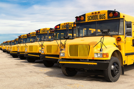 row of yellow school buses lined up in a parking lot photo