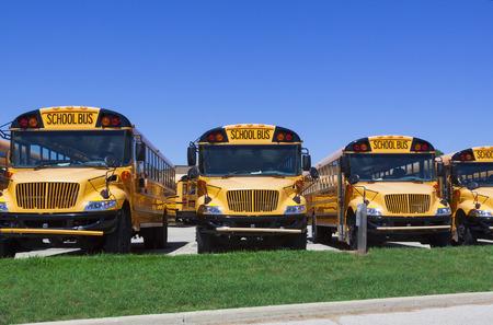 escuelas: fila de los autobuses escolares estacionado frente a una escuela en un d�a soleado Foto de archivo
