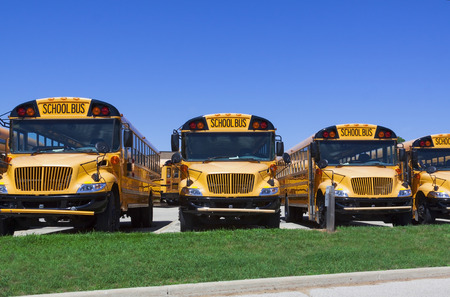 row of school buses parked in front of a school on a sunny day