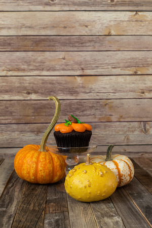 Pumpkin cupcake with decorative fall gourds