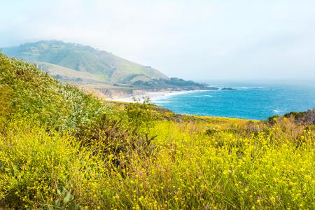 Beautiful Pacific Ocean coastline in Big Sur, California