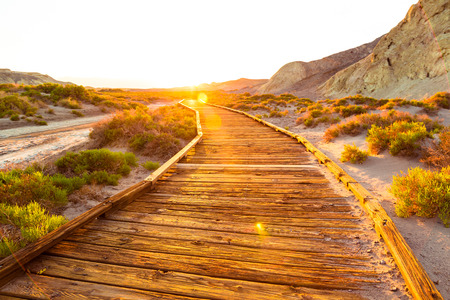 Scenic wooden hiking trail though a park in California during sunset