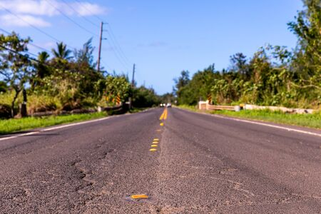 Rural paved road in tropics on sunny day