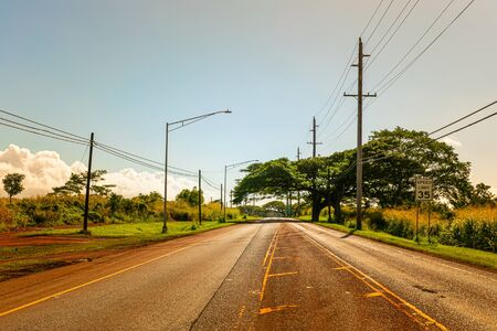 Rural paved road in tropics in the late afternoon sun 版權商用圖片