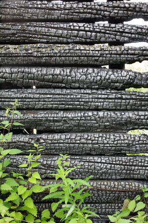 Black surface of the charred cracked wood Stock Photo - 3375651