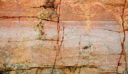 seacoast: The cracked surface of a rock on seacoast