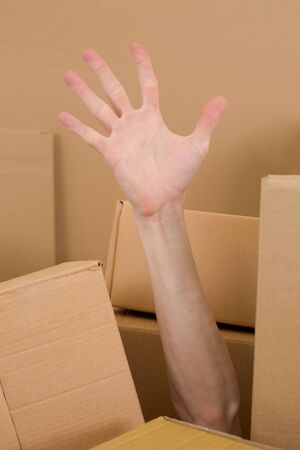 abatis: Male hand in heap cardboard on a white