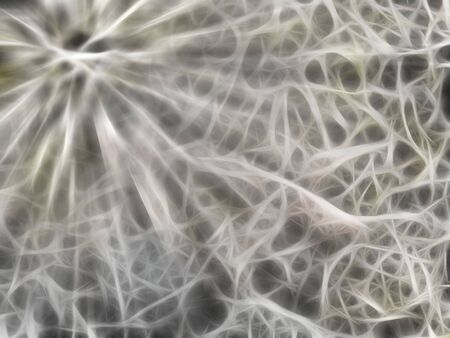 Abstract fractal mushroom spawn grunge background