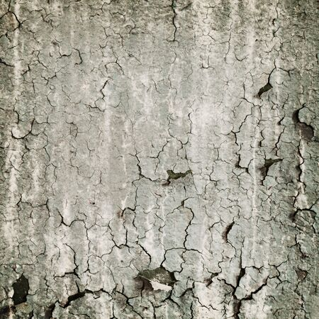 Loathsome square texture from the peeled wall Stock Photo - 5173394