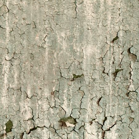 Texture of old damaged paint on a concrete wall photo