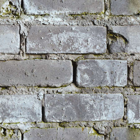 Seamless background from gray dirty moldy brick wall Stock Photo - 6574539