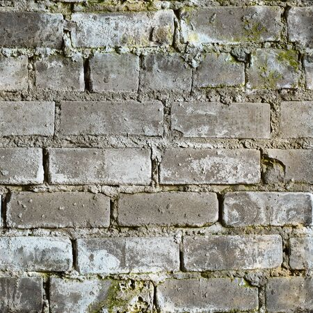 Seamless texture from gray dirty moldy brick wall Stock Photo - 6574545