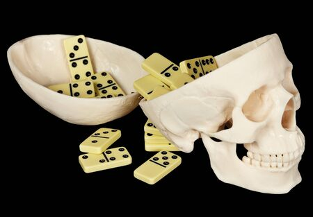 bared teeth: The human skull filled with dominoes on a black background