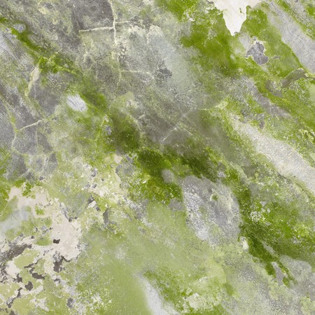 plaster mould: Mildewed a concrete wall with green stains and cracks Stock Photo