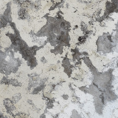 mustiness: Dirty old damaged concrete gray wall - texture