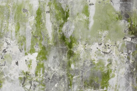 Old stone wall covered with greenish plaster with cracks Stock Photo - 7313344