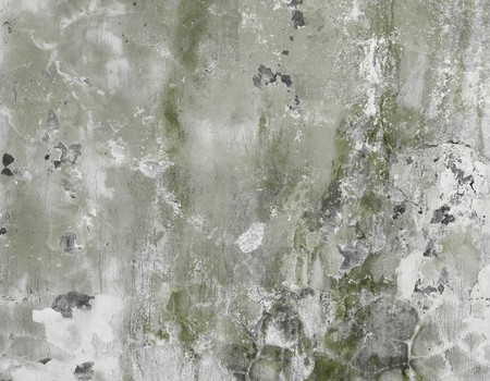 The concrete dirty green wall with stains and cracks - a background Stock Photo - 7541419