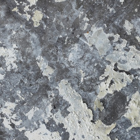 plaster mould: Old dirty gray concrete wall with mold Stock Photo