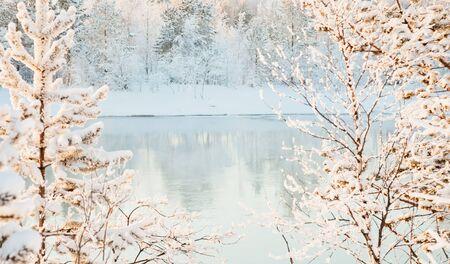 bosque con nieve: El paisaje de invierno soleado - vistas al r�o