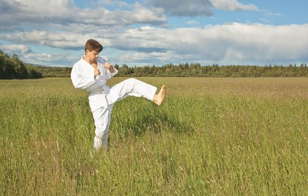 karateka: The karateka tries a kick in the field, open-air
