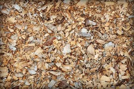 Waste of woodworking manufacture - sawdust close up - a background photo