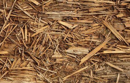 decomposed: Descompone la vieja madera podrida - residuos industriales