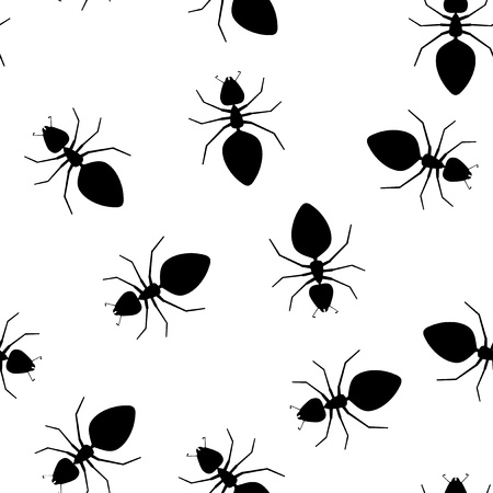 bugs: Seamless vector texture - ants pests on a white background