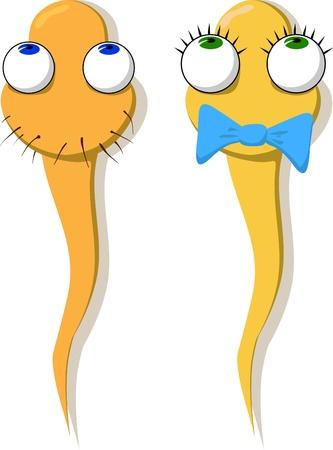Twee grappige getekende sperma - een jongen en een meisje. Vector.