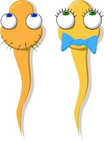 Two funny drawn sperm - a girl and a boy. Vector.