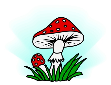 Amanita in the grass - a simple color vector illustration Stock Vector - 8976517