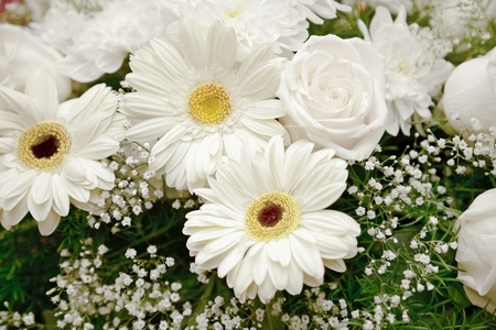 Background of a bouquet of white flowers - chrysanthemums and roses Stock Photo - 9598707