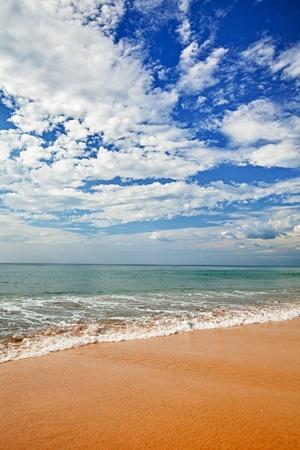 Surf on a tropical beach - a vertical landscape Stock Photo