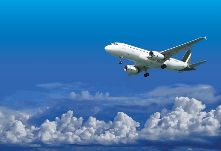 Passenger airliner is landing on the background of the cloudy sky - vector Vector