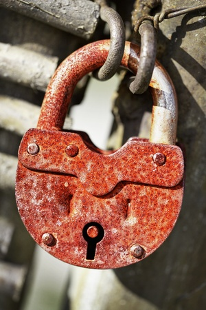 Rusty old locked padlock on the gate Stock Photo - 12655963