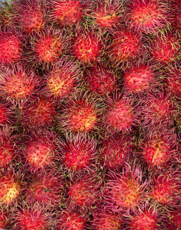Vertical background - rambutans fruit on market counter Stock Photo - 12655982