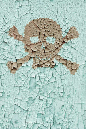 decomposed: The skull and bones on the old cracked wall Stock Photo