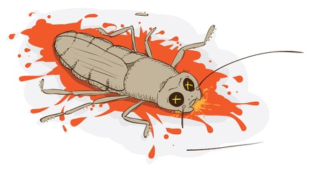 squash bug: Squashed a cockroach - vector illustration eps8