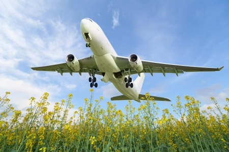 Passenger aircraft takes off over the summer meadow Stock Photo