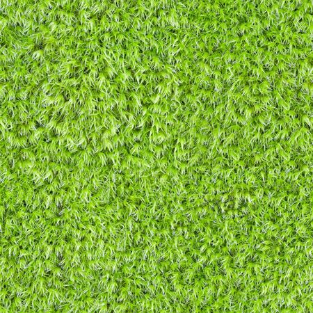 Seamless square texture - green marsh vegetation, moss photo