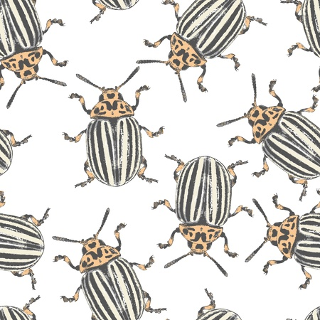 chaotical: Colorado beetles - vector seamless texture eps8 Illustration